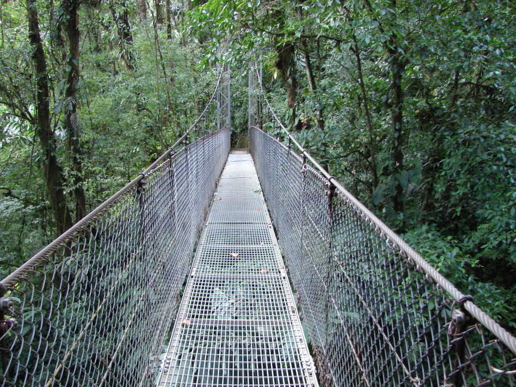 Tour Hanging Bridges