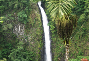 Combo Tour Arenal Volcano