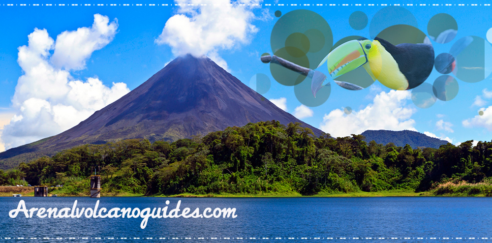 Arenal Volcano Guides